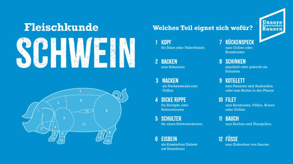 Foto: Schwein aktuell