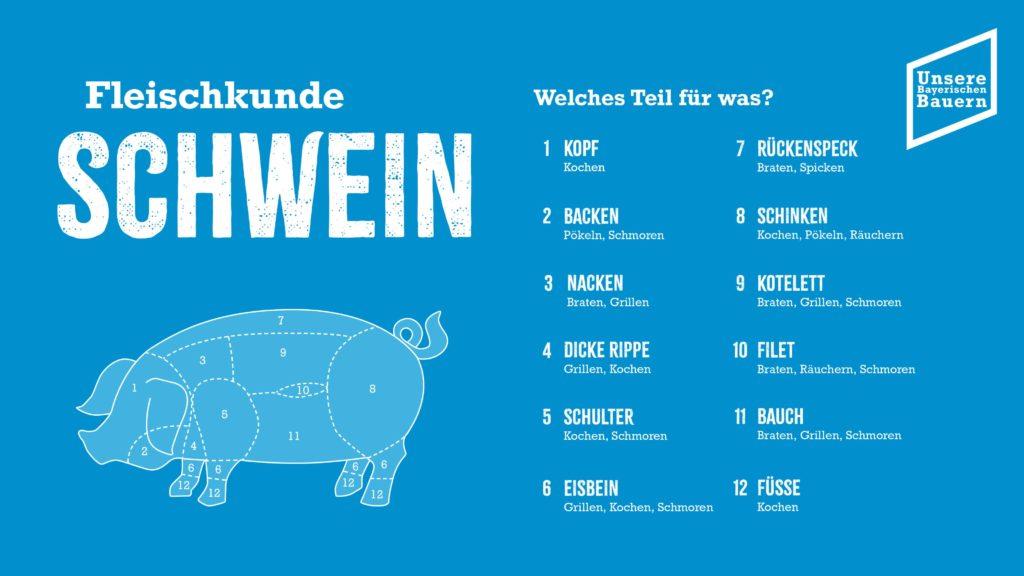 Foto: Fleischkunde Schwein neu